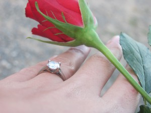 Engagement Ring & Rose