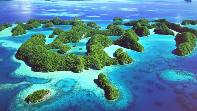 Micronesia's Palau Islands - I mean, hello?